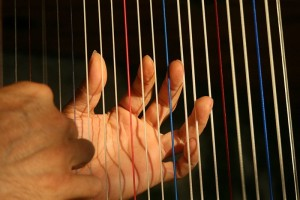 Hire wedding harpists from Ding's Entertainment Ltd